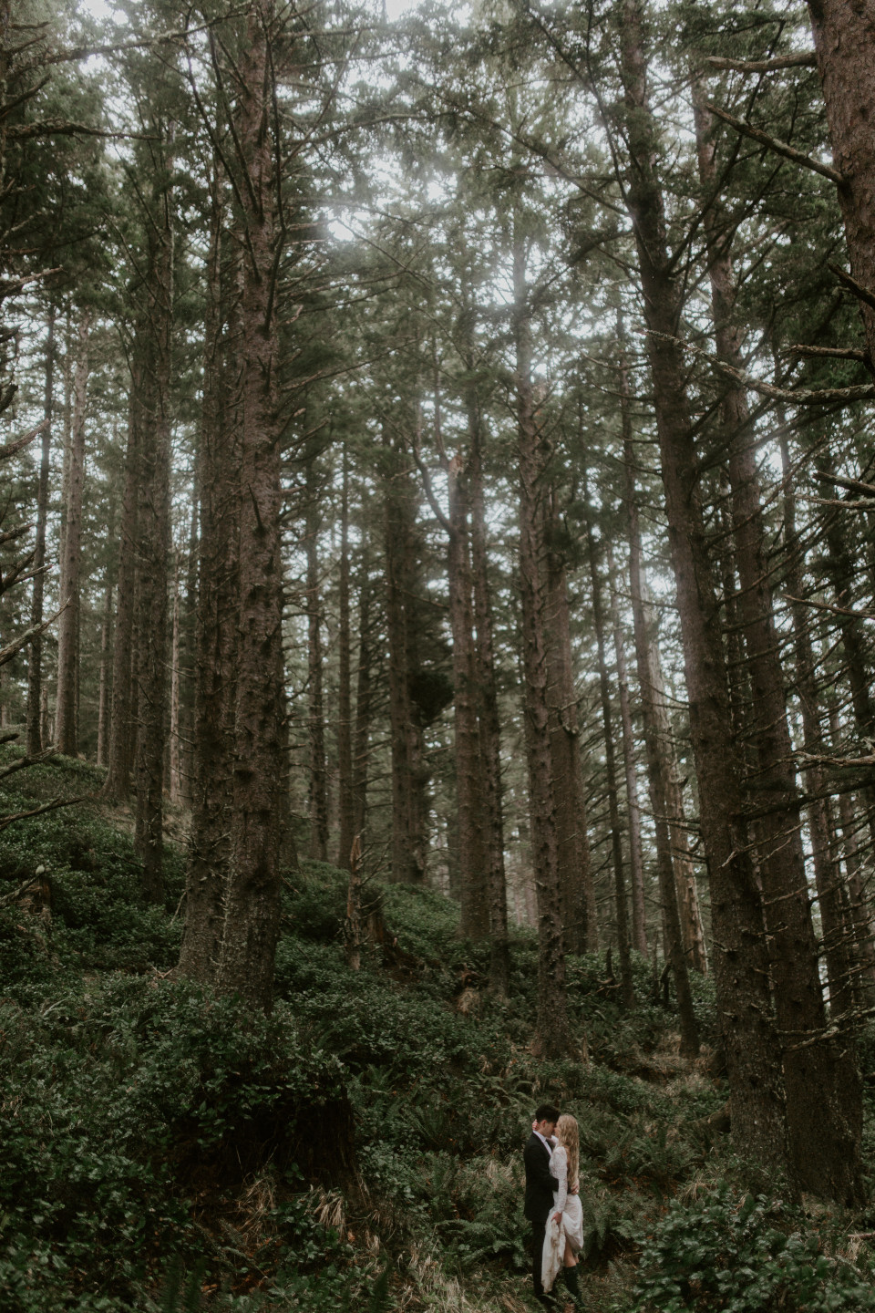 Hannah and Grant stand in the woods of Cannon Beach, Oregon. Wedding photography in Portland Oregon by Sienna Plus Josh.