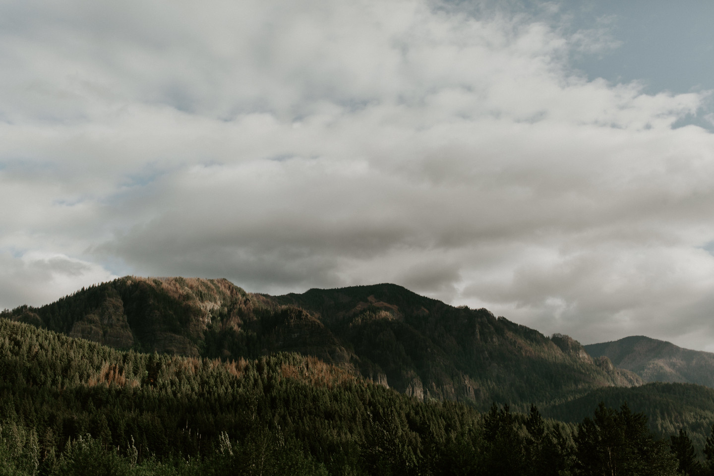 A view of the mountains at the Columbia Gorge, Oregon. Elopement photography in Portland Oregon by Sienna Plus Josh.