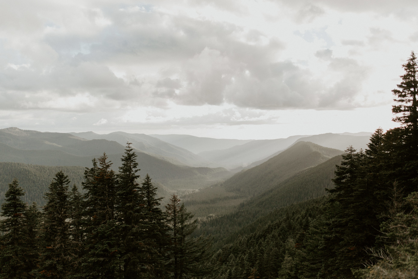 A view of the Oregon mountains. Adventure elopement wedding shoot by Sienna Plus Josh.