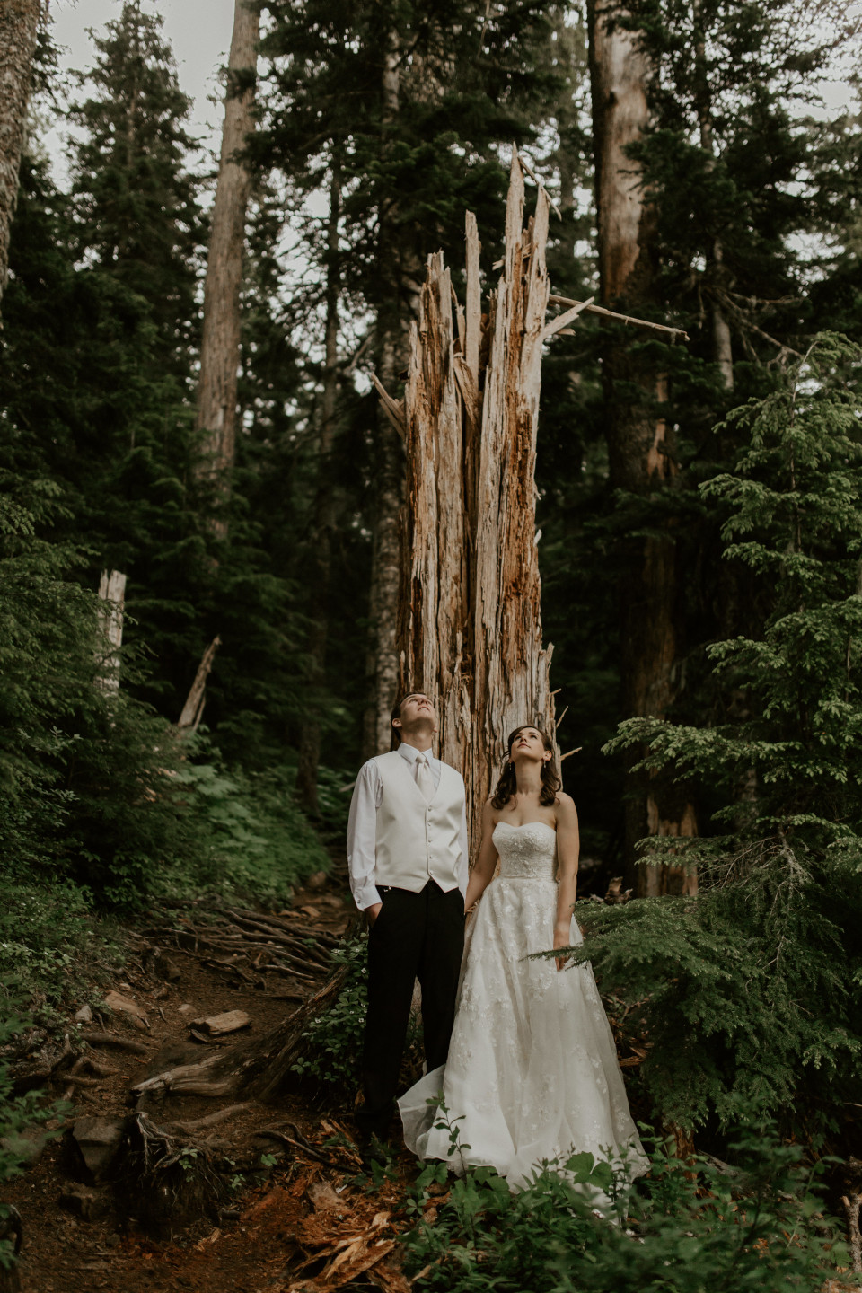 Moira and Ryan stand in front of a downed tree, looking up. Adventure elopement wedding shoot by Sienna Plus Josh.