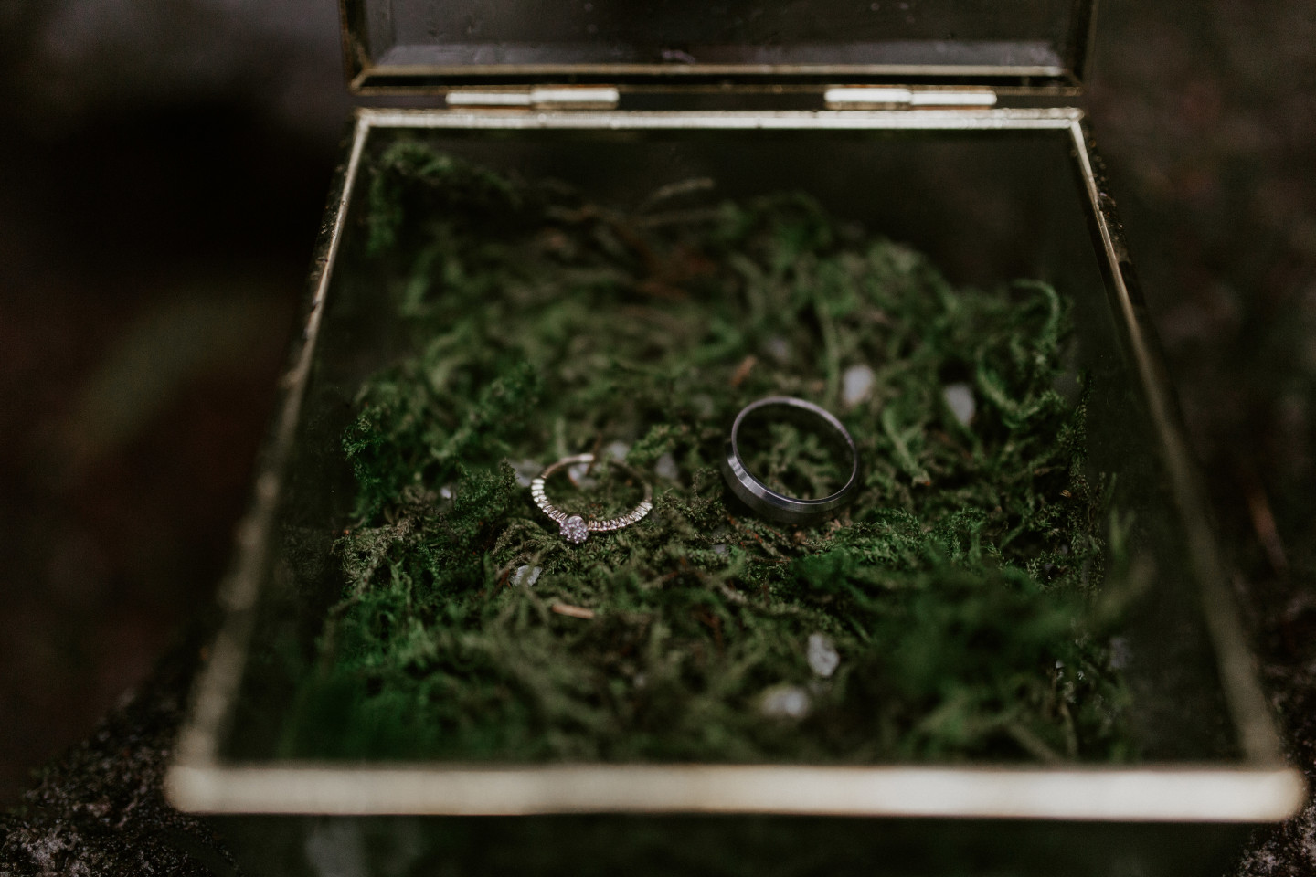 The rings for the wedding sit inside a box at Skamania House, Washington. Elopement photography in Portland Oregon by Sienna Plus Josh.